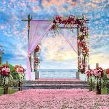 wedding backdrop outdoor 8x8ft wedding backdrop outdoor photography prop vinyl