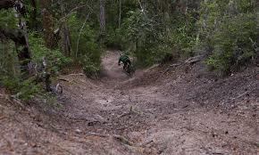 bikes oakley feedback polarized ray oakley crossrange xl carbon prizm trail oakley us store