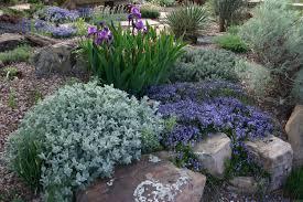 steingarten gestalten nützliche tipps ideen und beispiele