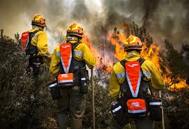 wildland fire gear and tools for wildland firefighters vallfirest