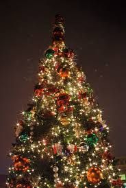 23 best oh christmas tree images on pinterest christmas lights