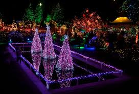 Vandusen Botanical Garden Lights Festival Of Lights At Vandusen Botanical Gardens My City