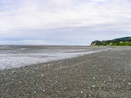 Alaska beaches images Kenai peninsula beaches directory jpg