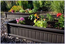 Mitre 10 Kitchen Cabinets by Raised Garden Bed Kits Mitre 10 Garden Home Design Ideas