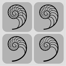 fibonacci spiral designs by karianne hutchinson illustration