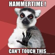 Can I Touch It Meme - sassy koala hammer time u can t touch this know your meme