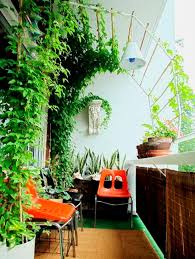 tropical garden ideas tropical privacy best balcony garden ideas and designs for on