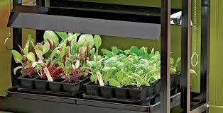 Indoor Herb Garden Light Gardening Under Grow Lights Gardener U0027s Supply
