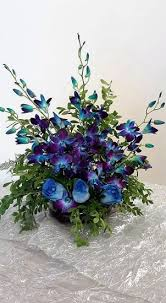Blue Orchids 1 1 A Blue Orchids With Blue Roses 1 1 A Blue Orchids With Blue