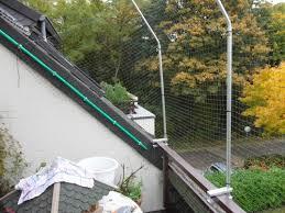 balkon katzensicher machen katzensicherer balkon katzen heimat
