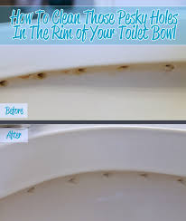 the craft patch how to clean the holes in the rim of your toilet bowl