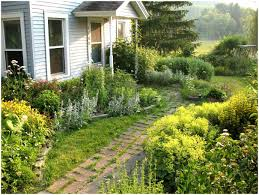 Front Yard Landscaping Without Grass - backyards wonderful small front yards landscaping ideas with no