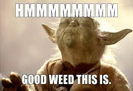 Weed Meme - good weed this smell how to roll the best joint in the world