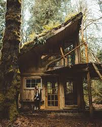 Small Cabin Home Best 25 Wood Cabins Ideas On Pinterest Log Cabin Homes Cabin