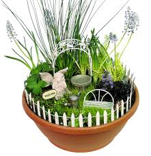 Mini Fairy Garden Ideas by Fairy Gardens Anyone Page 3 Gardening Forums