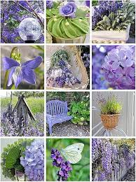 28 best flowers and gardens images on pinterest flower gardening