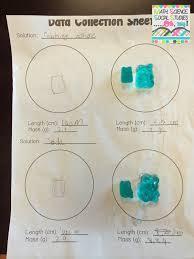 Scientific Method Worksheet For Kids Corkboard Connections Investigating Gummy Bears