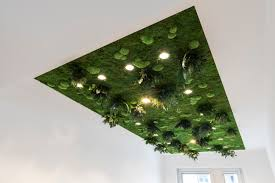 3d plant wall for greening of interior walls