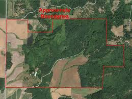 oregon land for sale 601 acres willamette valley timber and