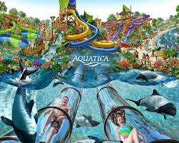 Sea World San Diego Map by Sea World Aquatica U2022 San Diego Hotel Childcare And Babysitting