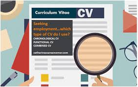 What Is The Best Definition Of A Chronological Resume by 3 Types Of Cvs Their Advantages And Disadvantages Catherine U0027s