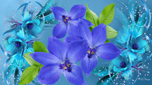 blue and purple flowers blue and purple flowers wallpaper hd wallpapers