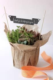 Teacher Gift Basket 10 Diy Gifts That Grow For Teacher Appreciation Week