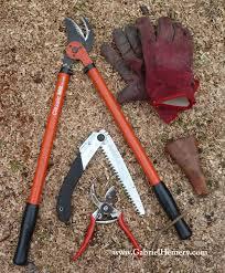 pruning tools my top choices gabriel hemery