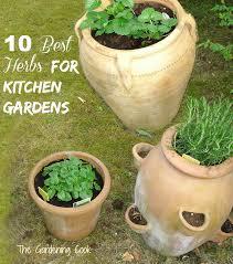 kitchen gardening ideas herbs for kitchen gardens my top 10 picks the gardening cook