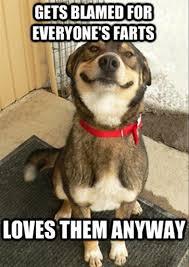 Dog Lady Meme - funny dog farts meme bajiroo com