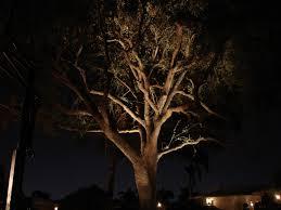 Low Voltage Landscape Lights Kit by 17 Best Images About Garden Lighting On Pinterest Gardens Trees