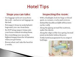 How Do Bed Bugs Travel images 49 new diy bed bug treatment uk diy baby stuff jpg