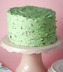 mint chocolate chip cake confessions of a cookbook queen