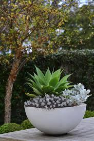 plant stand bowl planters outdoor succulents planter unique