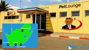 bid air petlounge is awarded a gold medal pethealthcare co za