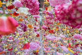 rebecca louise law u0027s 30 000 hanging flowers greet spring in berlin