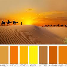 Warm Orange Color Color Communication Colors And Moods Shutterstock
