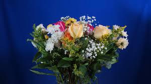 Dark Blue Glass Vase Bouquet Of Flowers In Glass Vase On Dark Blue Background Stock