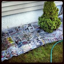use newspaper in flower beds instead of plastic weed mat it u0027s