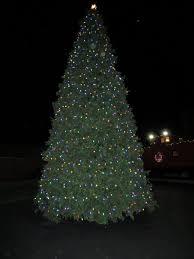 norfolk botanical gardens christmas lights 2017 the magical christmas lights road trip through virginia