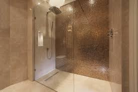 Wet Room Design Ideas Pictures
