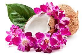hawaiian leis royalty free hawaiian pictures images and stock photos istock