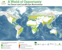 Spain On A World Map by Atlas Of Forest And Landscape Restoration Opportunities World