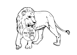 free coloring page lion