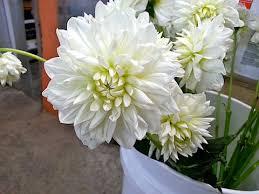 Wedding Flowers For September Wedding Flower Shopping