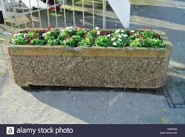 stone planter box with pebble dash effect and small plants stock