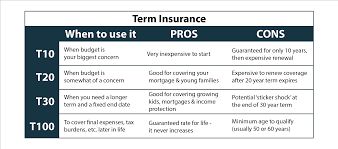term insurance pros cons