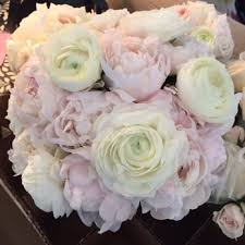 florist naples fl grace lake s florist 19 photos florists 997 5th ave pkwy