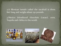 interesting and amazing facts about mexico