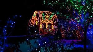 america u0027s wildest zoo lights holidays travel channel travel